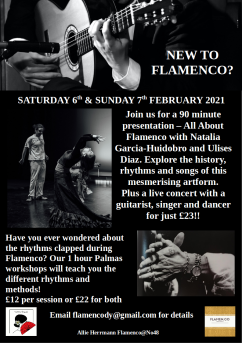 New to Flamenco poster